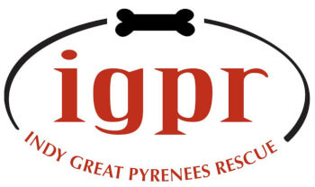 """The """"Indy Great Pyreneees Rescue"""" company logo"""
